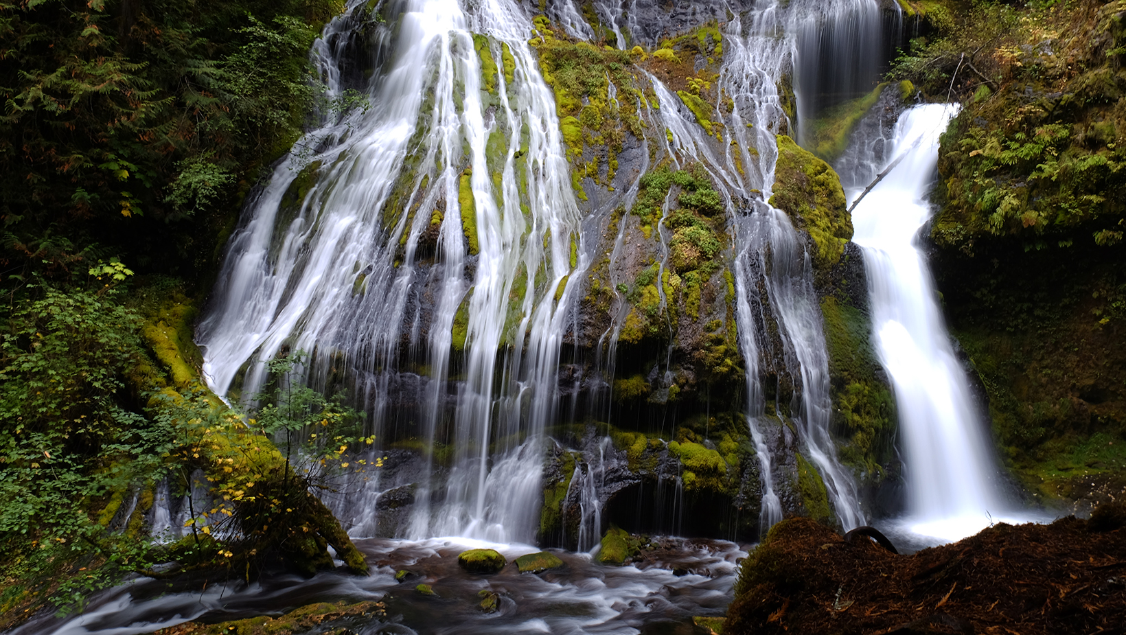 A mossy view of Panther Creek Waterfalls in the Gifford Pinchot National Forest