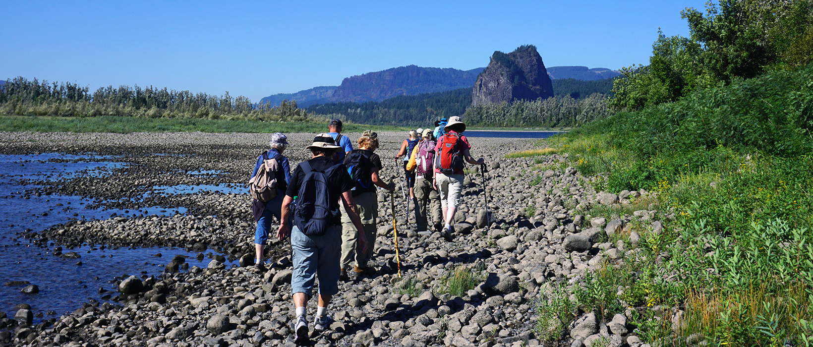 A group of hikers on a guided tour walk along the rocky banks of the Columbia River while heading toward Beacon Rock