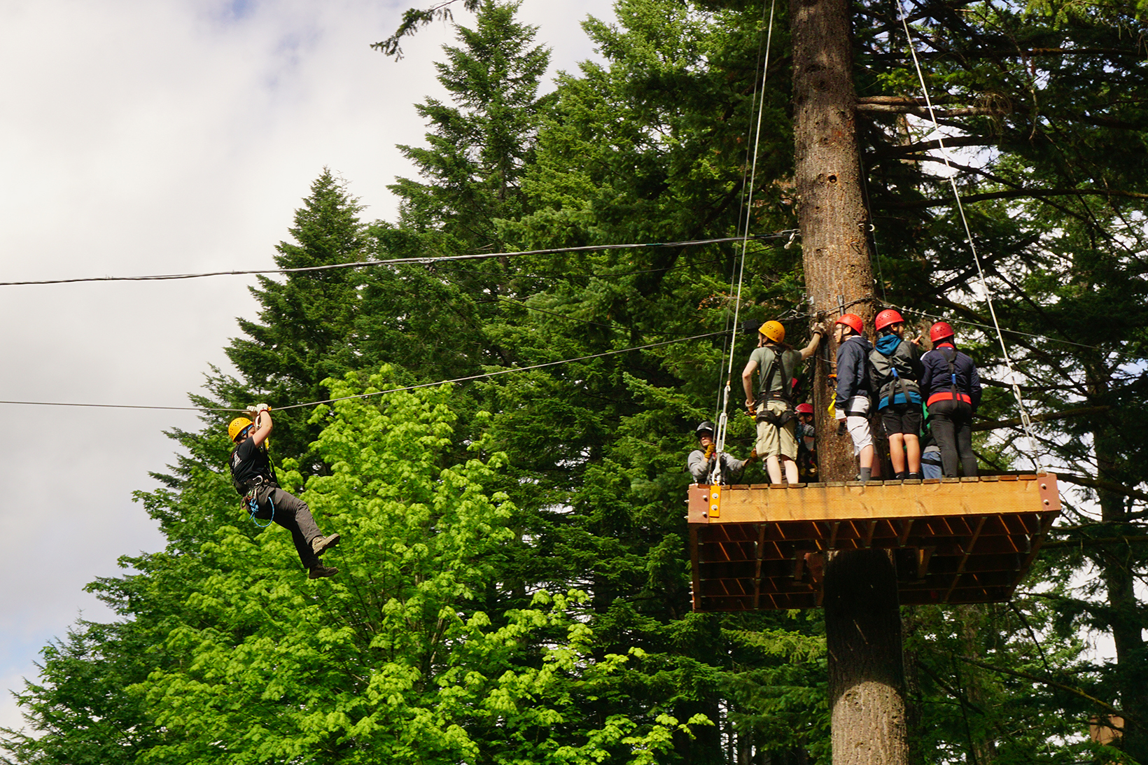 A group of people high up on a platform in the trees ziplining at Skamania Lodge Adventures