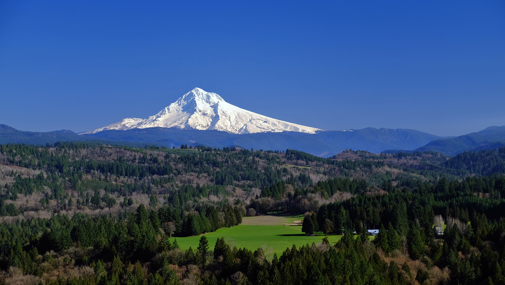 A pristine view of Mt. Hood on a sunny day surrounded by lush greenery and forested landscapes