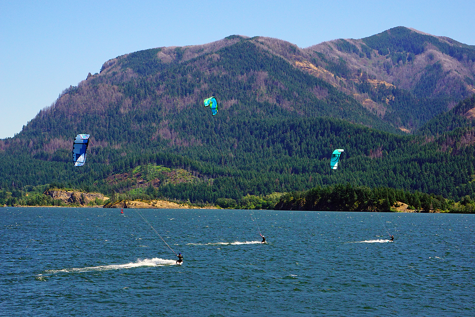Kiteboarders enjoy a beautiful summer day catching wind in their kites on the Columbia River