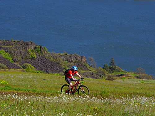 Mountain biking on Coyote Wall in the Gorge along the Columbia River