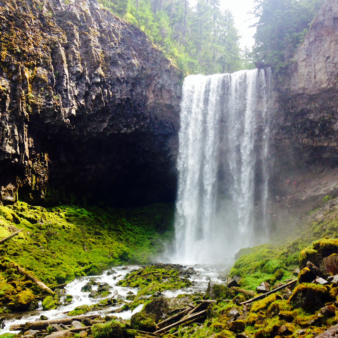 Tamanawas Falls, a two mile hike in through lush forests, is a great family hike that takes you to the gorgeous 100 foot waterfall