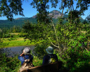 Birdwatching in the Columbia River Gorge National Scenic Area